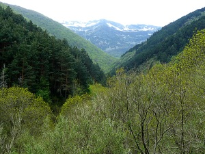Santa Cruz Valle Urbion2