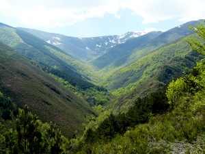 Santa Cruz Valle Urbion4