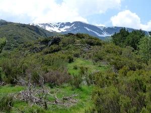 Santa Cruz Valle Urbion5