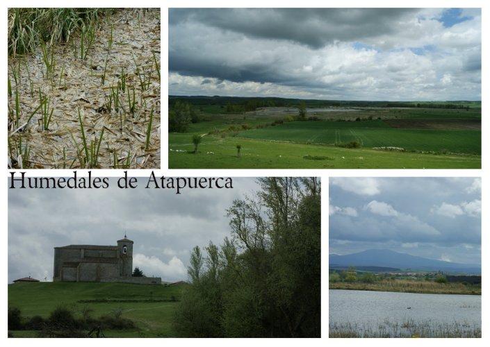 Humedales de Atapuerca