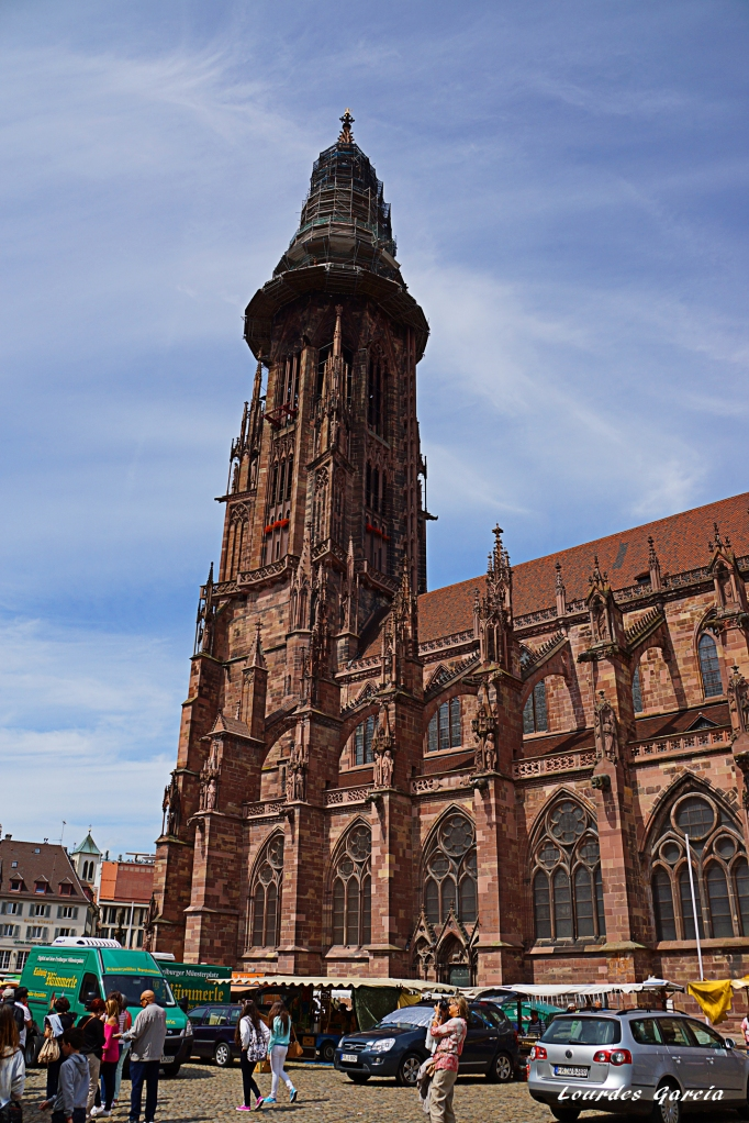 Catedral de Friburgo (2) 12-8-2014