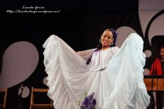 Festival Folklore 2014-8