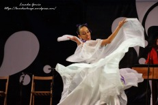 Festival Folklore 2014-9