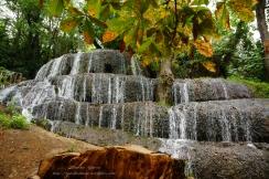 Parque Natural del Monasterio de Piedra(10)