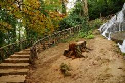 Parque Natural del Monasterio de Piedra(11)