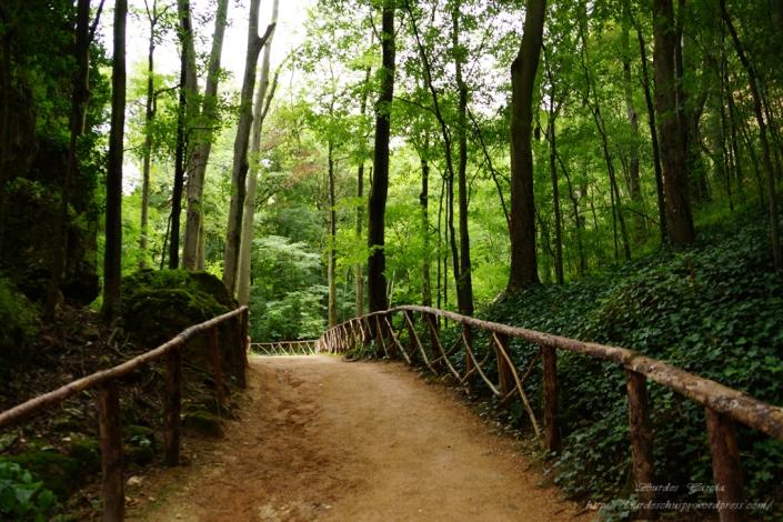 Parque Natural del Monasterio de Piedra(18)