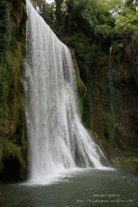 Parque Natural del Monasterio de Piedra(6)