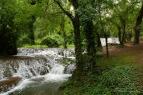 Parque Natural del Monasterio de Piedra(7)