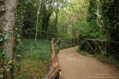Parque Natural del Monasterio de Piedra(8)